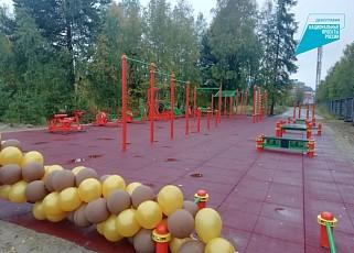 Площадку ГТО открыли в гимназии Советского